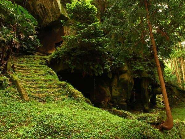 1600x1200-hidden-forest-temple-desktop-pc-mac-wallpaper-94485